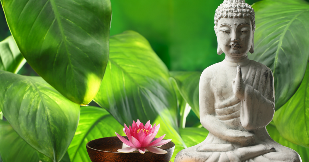 My favourite resources for meditation and finding peace